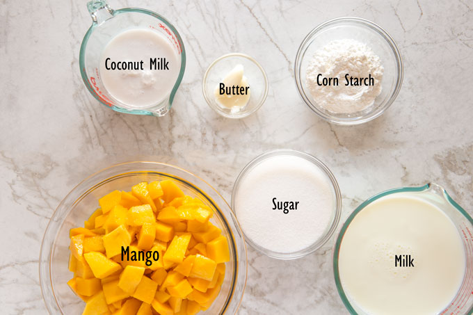 Ingredients for the mango coconut pudding